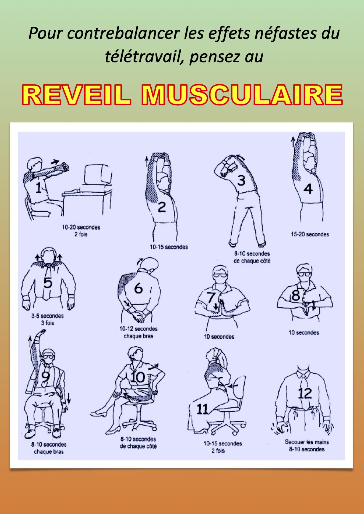 Réveil musculaire